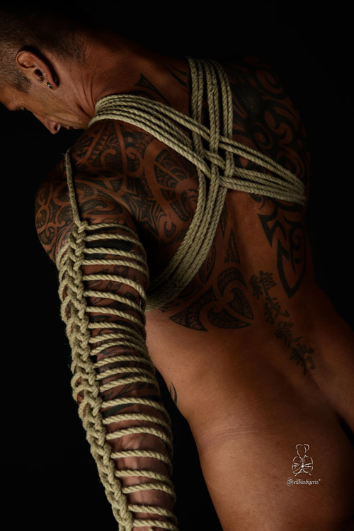 diverse Seil und Fesseltechniken