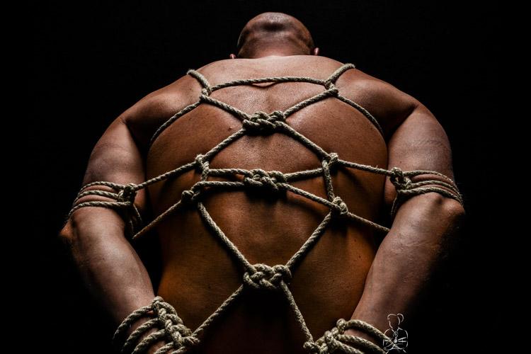 Seil - Fessel und Knotentechniken