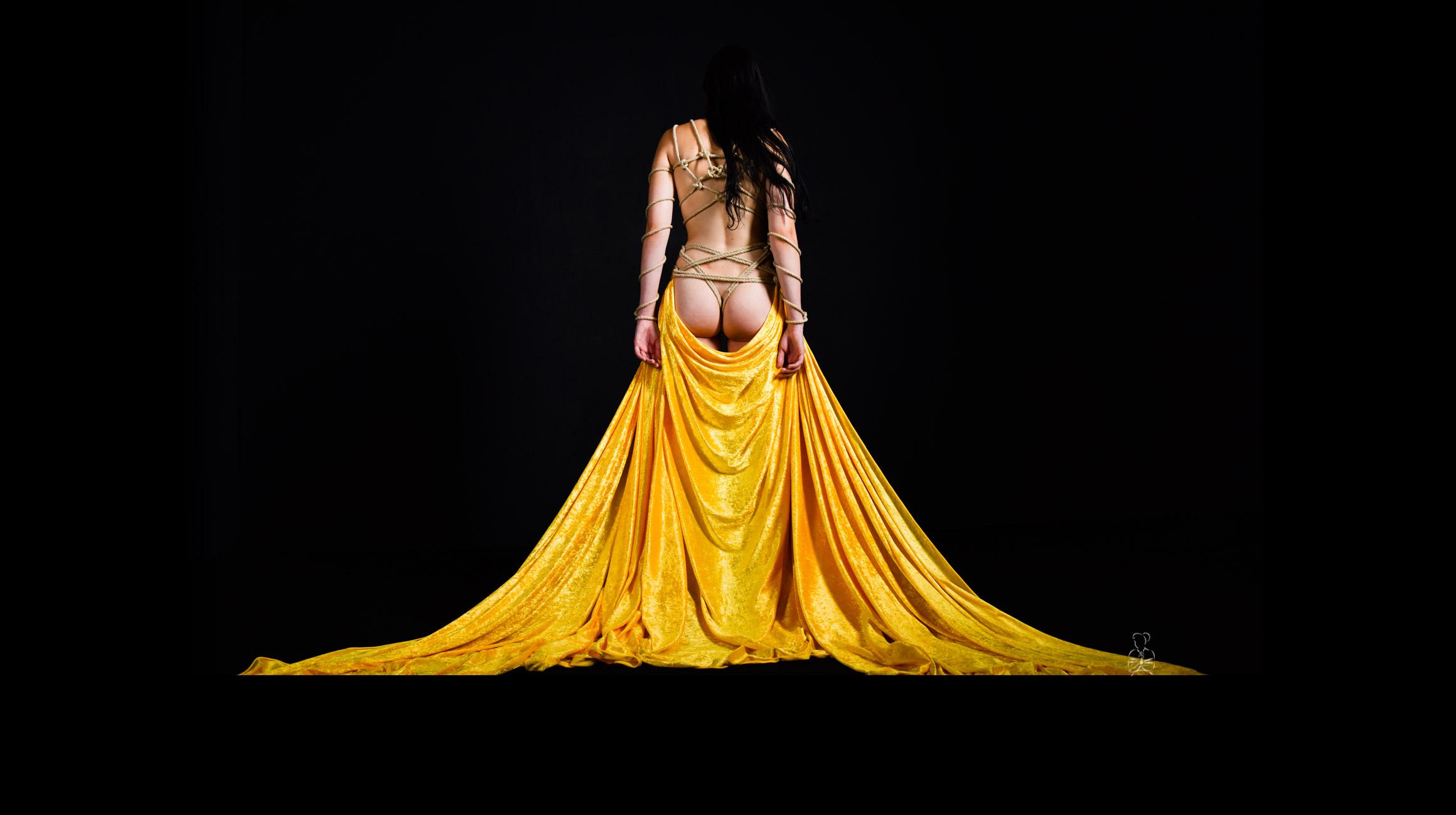 Sinnliche, weibliche, erotische & kunstvolle Bondage Fotos von Frauen